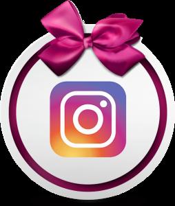 ellen instagram