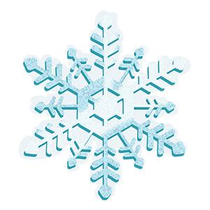 https://www.winzily.com/wp-content/uploads/2016/11/ww-12days-ellenemoji-snowflake-snowcovered.jpg