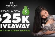 World's Best Cat Litter Win Cash Meow $25K Giveaway