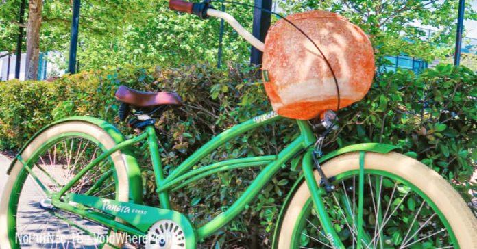 Panera Bread Bike Bowl Giveaway 2021